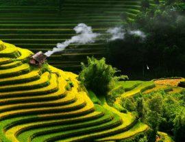 Vietnam con Sapa, tra cielo e mare – garantito 2017