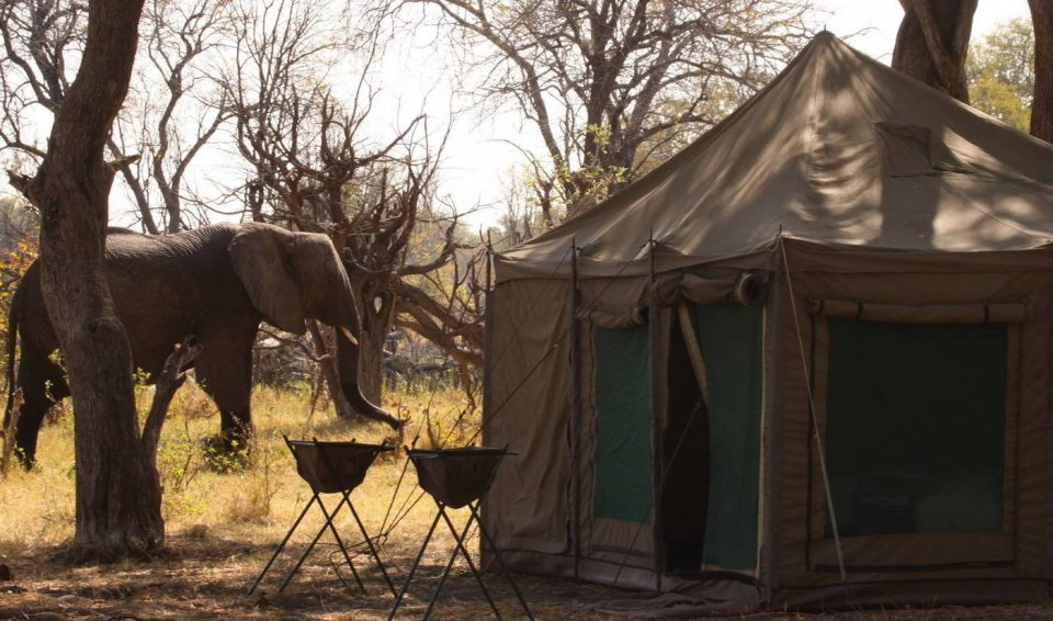 Botswana e Zimbabwe: dall'Okawango alle Victoria Falls in campo tendato