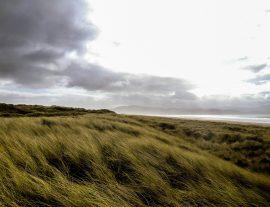 Sud d'Irlanda