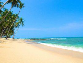 Sri Lanka, sole, sale e mare – mag./ott. 2017 –