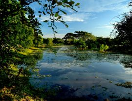 Sri Lanka, Cultural Trail & Yala National Park