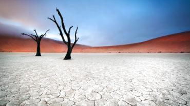 Pure Namibia