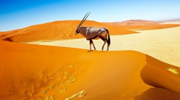 Welcome to Namibia!