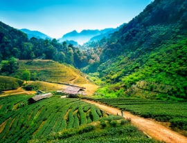 Thailandia Classica: imperdibile