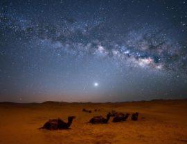 CAPODANNO NEL DESERTO OMANITA – SHORT