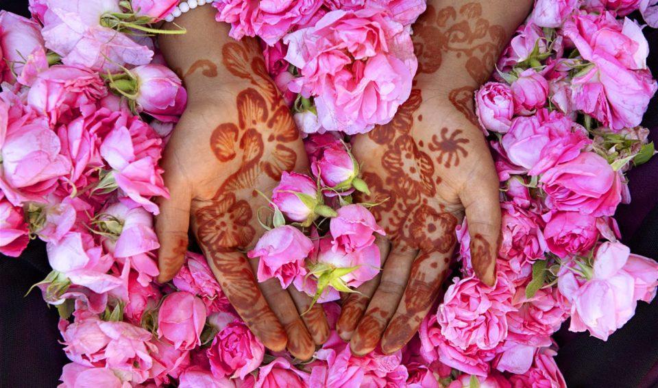 Iran, Speciale Festa delle Rose 2020