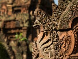 Preziosa Cambogia