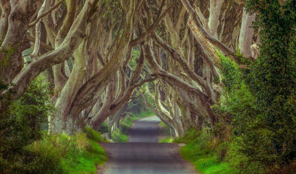 Full Irlanda Experience Express
