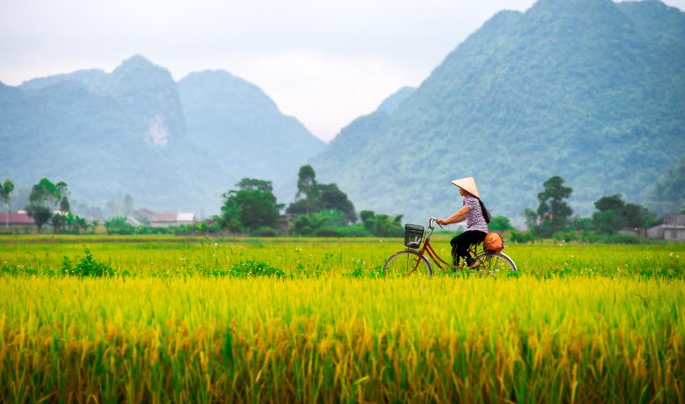 Vietnam in bicicletta!