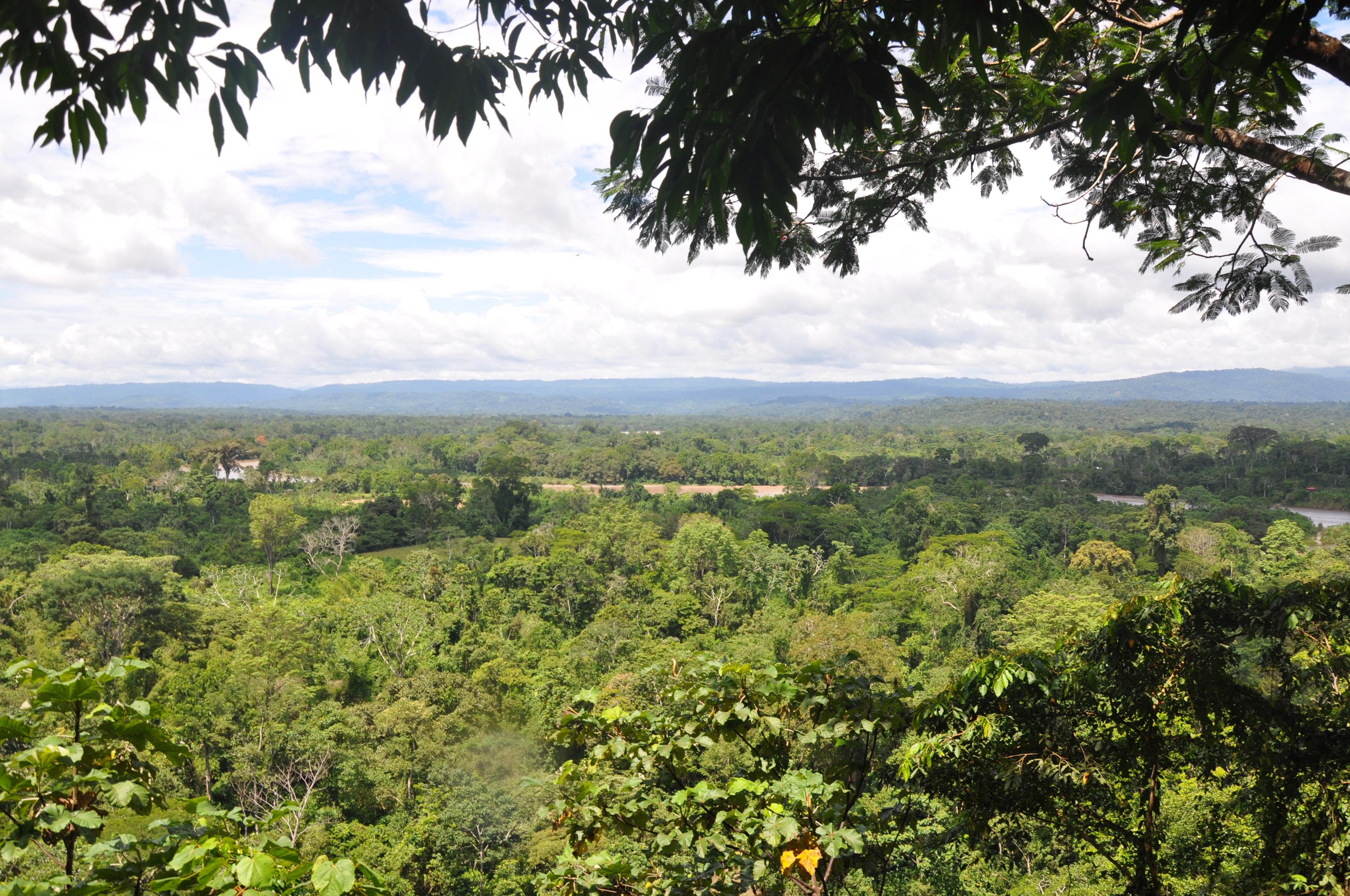 Trekking nella foresta amazzonica