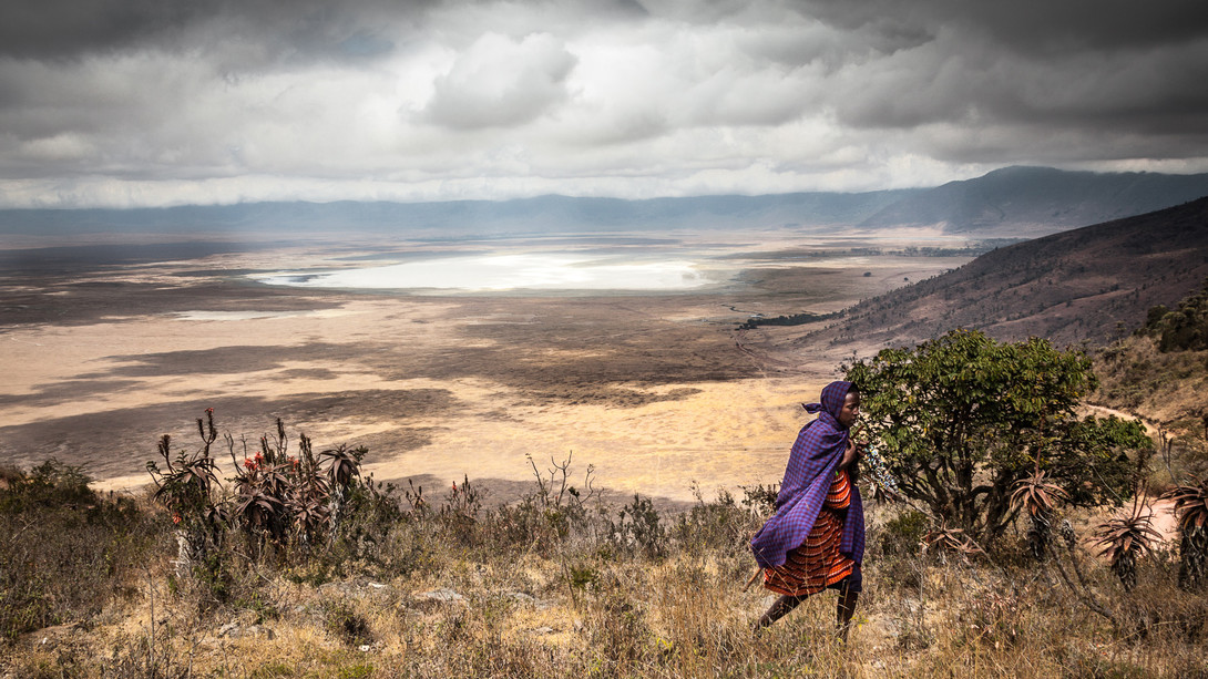 Cratere di Ngorongoro