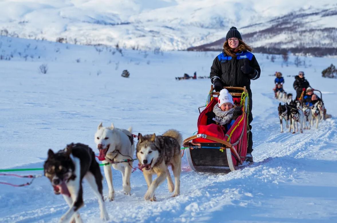 Escursione in slitta trainata da cani