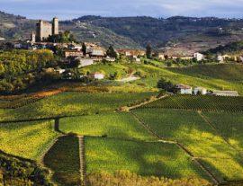Langhe e Monferrato: tradizioni, sapienza e gusto