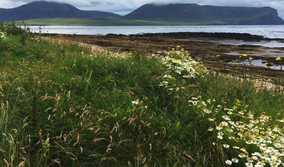 Scozia e le Orcadi 2021